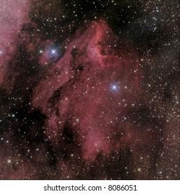 IC 5070 Pelican Nebula in Cygnus