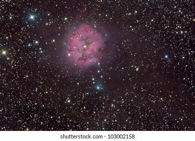 IC 5146 Coon Nebula