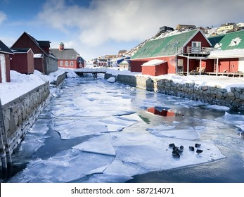 Ice berg in town, duck family on ice at center cold town old church with blue sky background. The coolest Qaqortoq Greenland, Europe