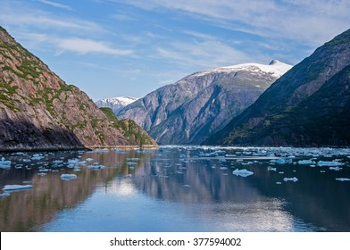 Ice bergs in Tracy Arm Fjord near the Sawyer Glaciers in Southeast Alaska