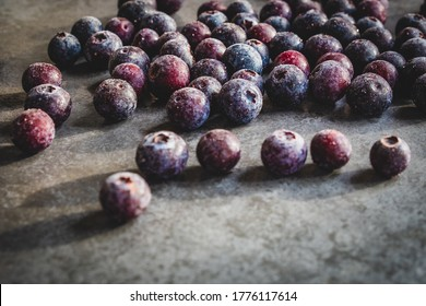 ice cold and frosty blueberries on a grey slate tile