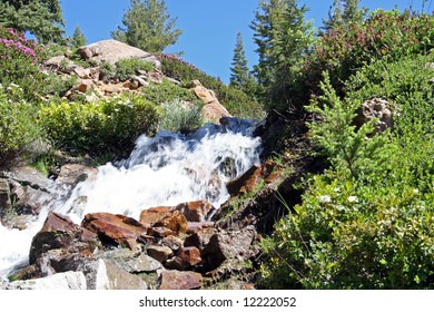Ice cold snowmelt pours down a rugged embankment covered in wildflowers. Lassen Volcanic National Park