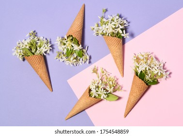 Ice cream cones with jasmine flowers on violet and pink background