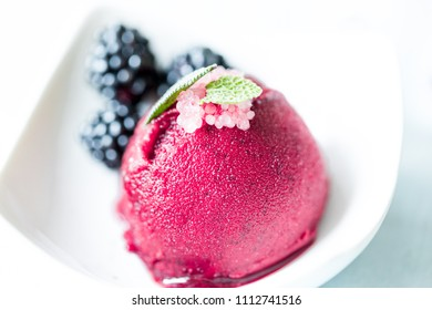 ice cream or sorbet in a white bowl with fresh fruit shallow focus