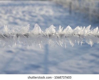 Ice crystal on a cable