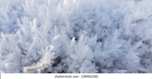 Ice crystals,close up frost in the morning,frost background,frost on the ground,frost on grass