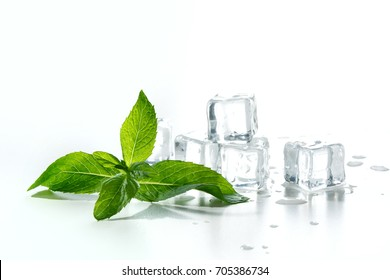 Ice cubes with fresh mint isolated on white background.  Close up.