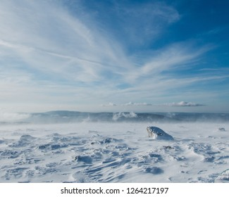 Ice desert on the summit of Brocken in the Harz mountains in Germany