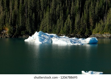 Ice floe along the inside passage near Juneau, Alaska