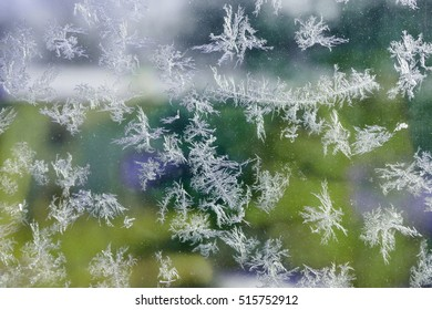 ice flower crystal on window in winter morning