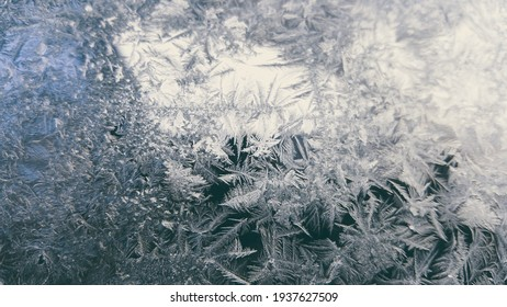 ice flowers on the window. very low temperatures in the morning during the winter season. traces of frost on the glass