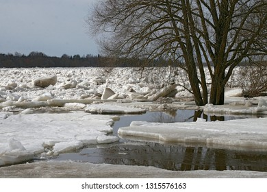 Ice jam along the Daugava River, Plavinas town, Latvia. Here ice jam is traditionally formed - the Daugava River bends, but the ice goes straight and collides on the shore, creating an ice jams.