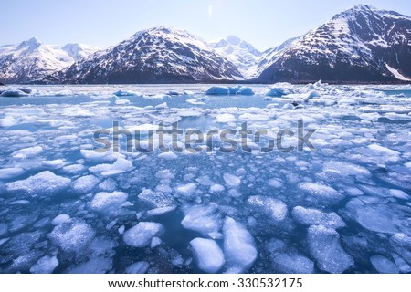 Ice melting in a lake and snow-capped mountains in Alaska. Global warming.