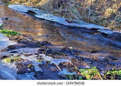 Ice shelf formation in forest flowing stream around stone, mud and flora with moss on winter morning in the Rocky Mountains around Rose Canyon, Herriman, Salt Lake City, Utah. USA