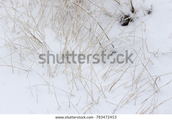 ice and snow