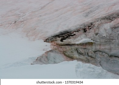 Ice snow laced with red algae