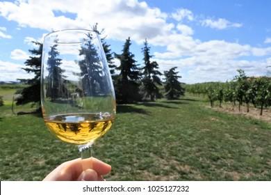 ice wine outside