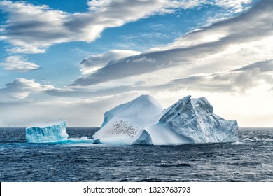 Iceberg in Antarctica sea