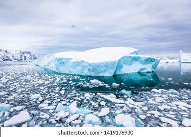 Iceberg with blue ice and covered by snow in Antarctica, scenic frozen landscape in Antarctic Peninsula
