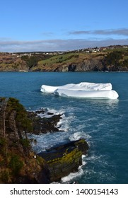 iceberg floating in the bay of Torbay, residential area in the background