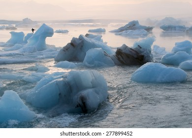 Iceberg in the glacier lagoon. Summer season. Iceland