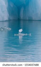 Iceberg lagoon jokulsarlon on the south of Iceland.