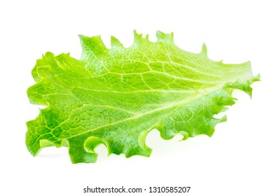 Iceberg. Lettuce leaves isolated on white background. Fresh salad. Top view