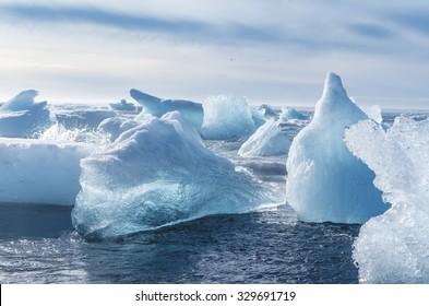 Iceberg pieces at the sea beach