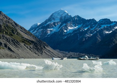 Icebergs float in a cold lake with a large snow covered mountain