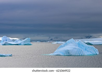Icebergs float silently in a frigid Antarctic bay.