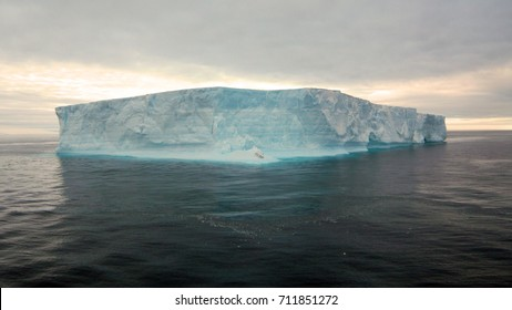 Icebergs floating in Antartica