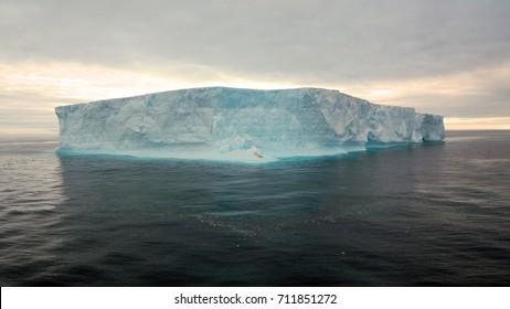 Icebergs floating in Antartica