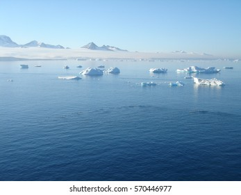 Icebergs off the Antarctic Peninsular.