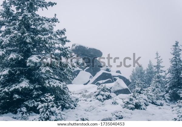 Ice-cold winter landscape with a stone massif in the Harz National Park