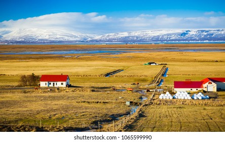 Icelalndic farm houses and barns with bright red roofs and snow