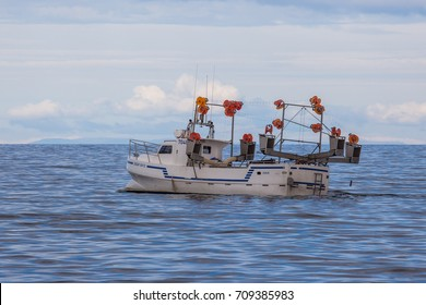 Iceland - August 16, 2017 : Commercial fishing boat Eidur EA-13 at mackerel fishing near the south-west coast of Iceland.