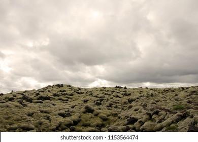 Iceland field  lava