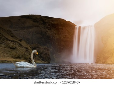 Iceland waterfall creative