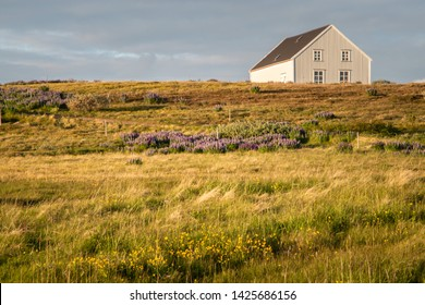 Icelandic country side house with sunset light