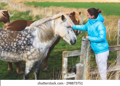 Icelandic horses and woman. Girl in coat petting horse in beautiful nature on Iceland.