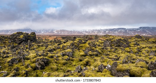 Icelandic landscape covered with moss and volcanic rocks in snaefellsnes peninsula iceland