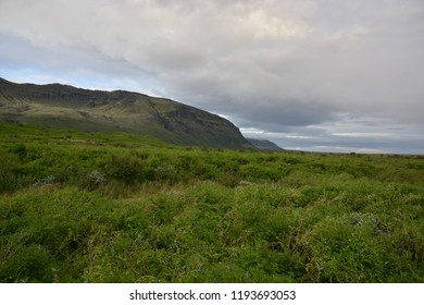 Icelandic landscape and mountain