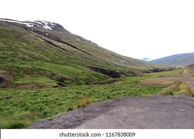 Icelandic summer landscape