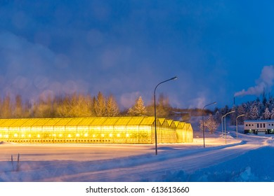 Iceland's greenhouses use for agriculture in winter