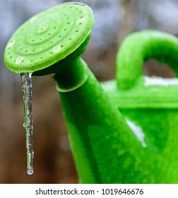 Icicle forming on flower watering can-nature photography