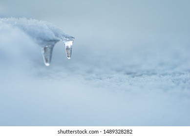 Icicle in winter landscape with copy space