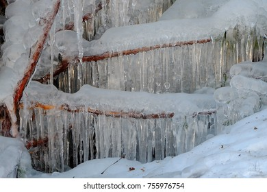 Icicles covering tree branches