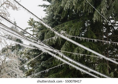 Icicles dangle from overhead electrical cables sagging under a thick coat of ice