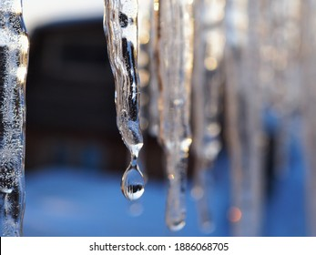 Icicles and a drop of melt water close-up. Snow melting. The beginning of the warm season, the end of winter. Bright illustration. Rustic sunset in early spring. Macro