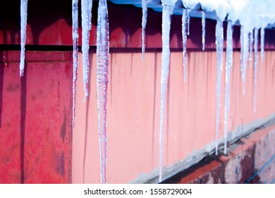 Icicles hang on the roof of a house in clear weather in winter. Spring-winter landscape with icy, shiny, transparent icicles.